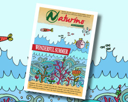 Wonderful Summer: the new Ebook from Naturino